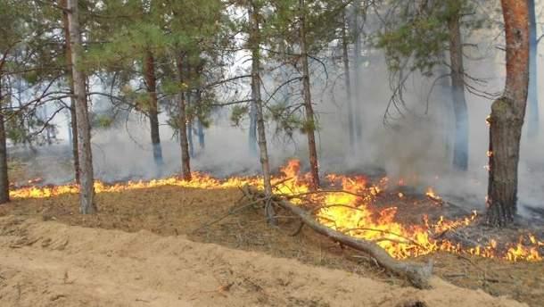 Пожежі на Херсонщині