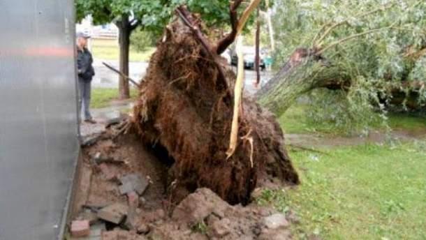 Мощные ураганы всколыхнули часть Польши