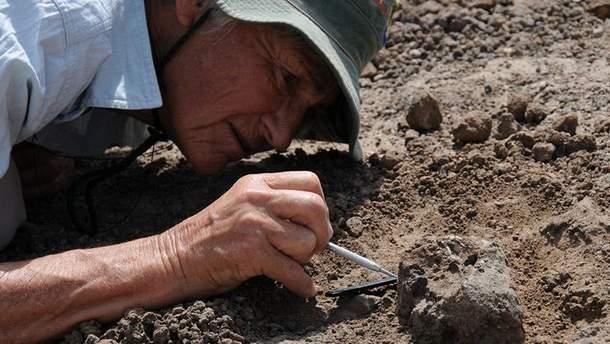 Палеонтологи наткнулись на невероятную находку в Неваде
