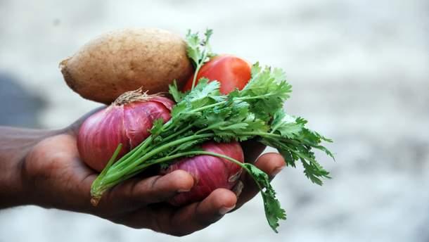 У спеку краще їсти лише овочі та фрукти