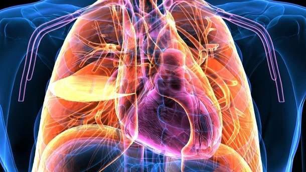 На органи тіла тепер можна дивитись через камеру