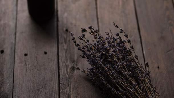 Рослини, які поборють стрес