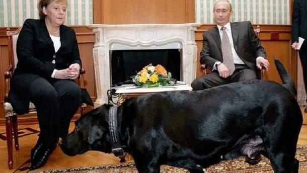 """Издание """"Focus"""" прокомментировало конфуз с Путиным-""""собакой"""""""