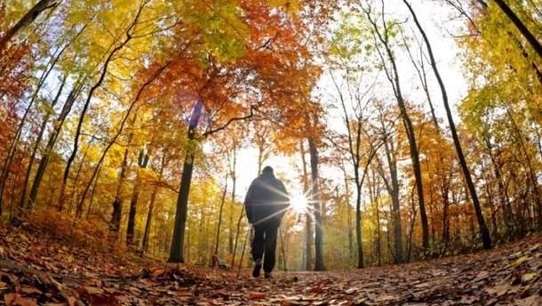 Прогноз погоди на 17 вересня в Україні: буде спекотно