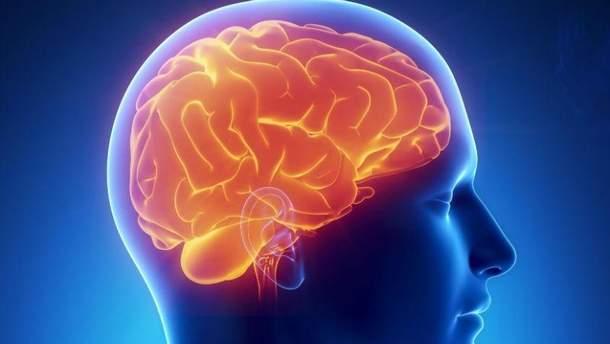 Вчені підключили мозок до інтернету