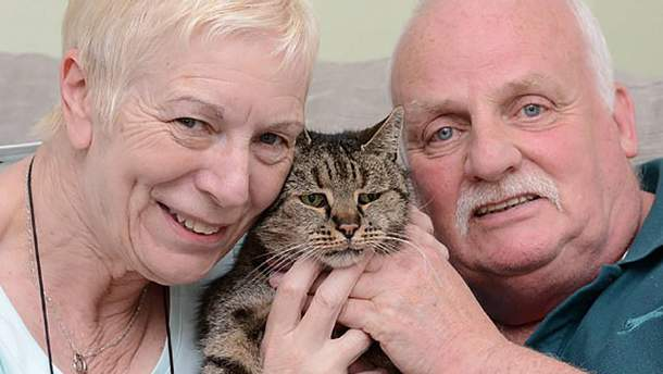 Кот Натмег умер, ему было 32 года