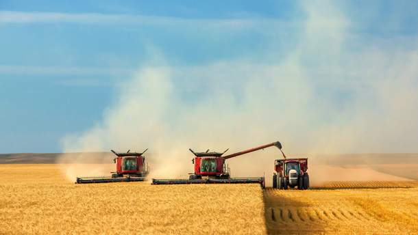 Аграрії зібрали рекордний врожай зернових