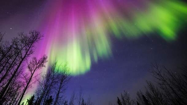NASA показало знімок північного сяйва над Канадою