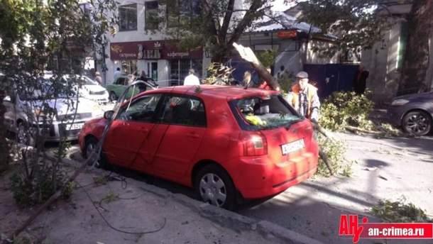 Сильный ветер бушевал в Симферополе: опубликовали фото