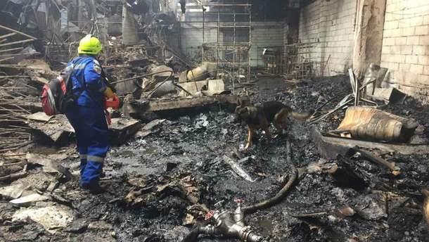 Внаслідок пожежі загинула жінка