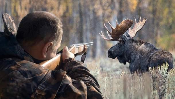 В Украине разрешили охоту на лосей