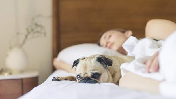 5 привычек, которые сохранят молодость мозга