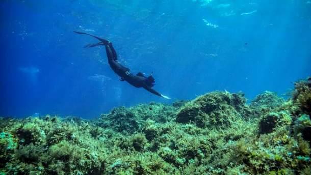 Апноэ – подводное плавание с задержкой дыхания