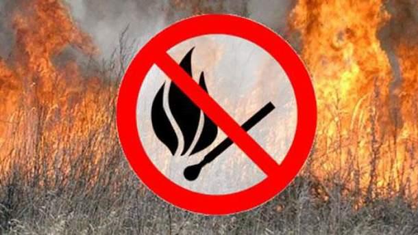 Украинцев призывают не сжигать сухие листья