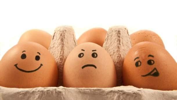 Киевлянин похитил с птицефермы куриных яиц почти на 1 миллион гривен