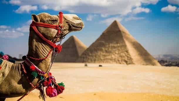 У Єгипті оголошено режим надзвичайного стану