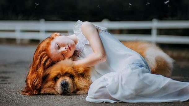 Вчені визначили, кого ми любимо більше – собак чи людей