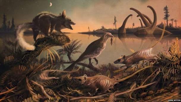 Вчені знайшли зуби прадавніх землерийок