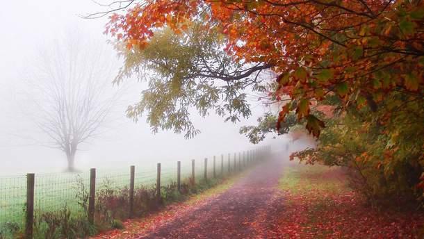 Прогноз погоди в Україні на п'ятницю, 10 листопада