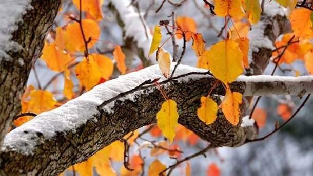Прогноз погоди в Україні на 20 листопада
