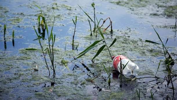 Пластикові плашки забруднюють довкілля