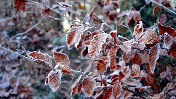 Погода 26 листопада в Україні буде холодною, на Заході – сніг з дощами