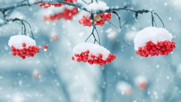 Какой будет зима в Украине