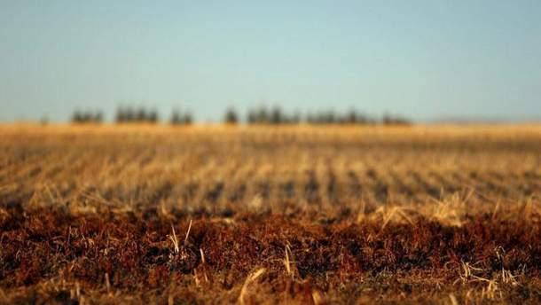 Обработкой земель Академии аграрных наук займутся китайцы