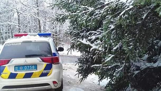 Поліція не пропускає Головну Новорічну ялинку до Києва