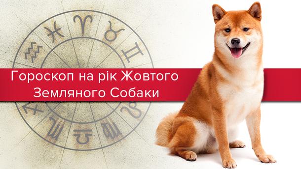 Гороскоп на 2018 рік Собаки за знаками Зодіаку