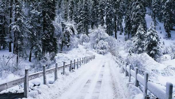 Прогноз погоди на 22 грудня в Україні