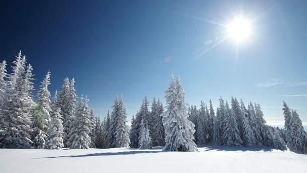 Прогноз погоды в Украине на пятницу, 12 января