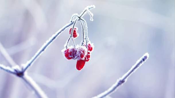 Погода в Украине на воскресенье, 14 января