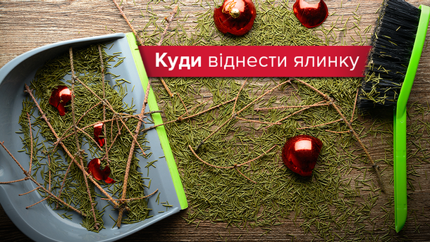 Куда отнести ёлку после праздников в Киеве и Львове