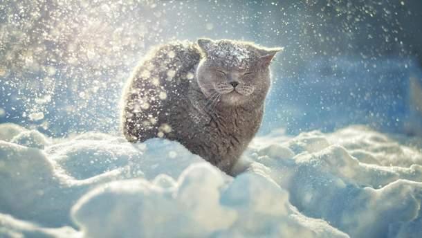Прогноз погоди в Україні на 22 січня