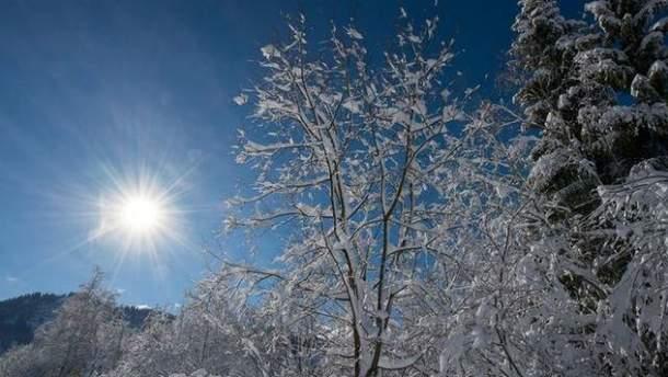 Прогноз погоды в Украине на 25 января