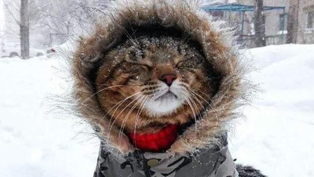 Якою буде погода в Україні в лютому