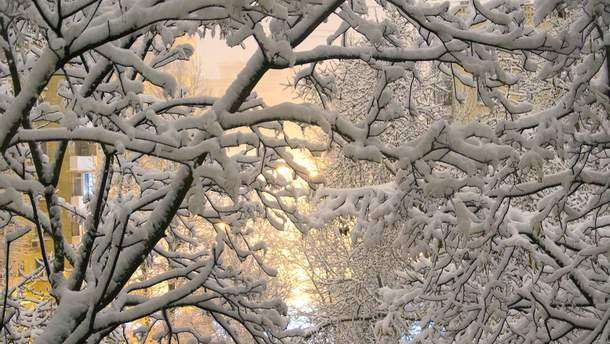 Самый сильный снегопад за зиму обрушился на Москву