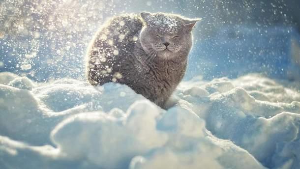 Ночью на Украине будутт сильные морозы