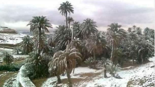 Сахару снова засыпало снегом