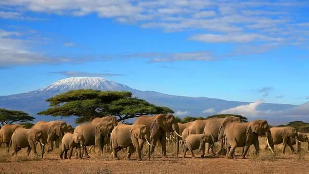 Від відвідин Танзанії варто утриматися