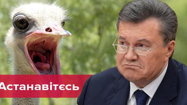 Реакция соцсетей на пресс-конференцию в Москве