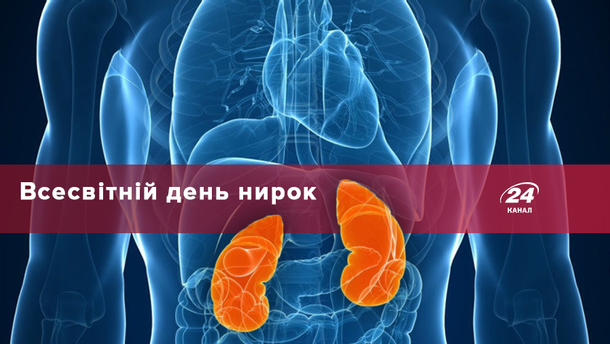 8 березня – Всесвітній день нирок