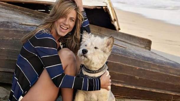 Дженнифер Энистон с собакой