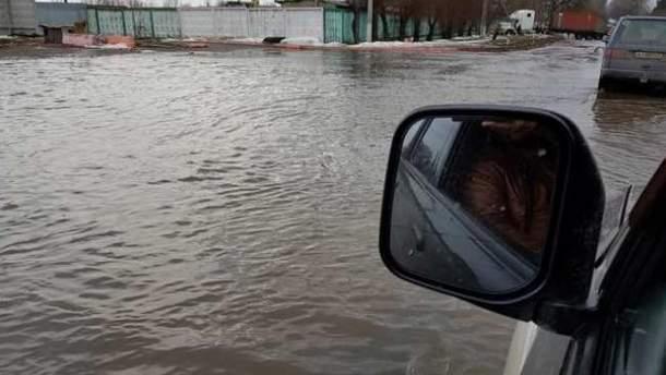 """Водители """"переплывали"""" дорогу на автомобилях под Киевом"""