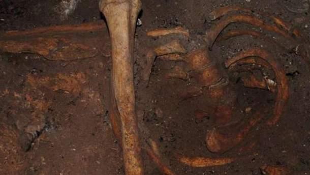 Останки древнего жителя Северной Африки