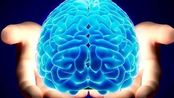 Як тримати мозок у тонусі