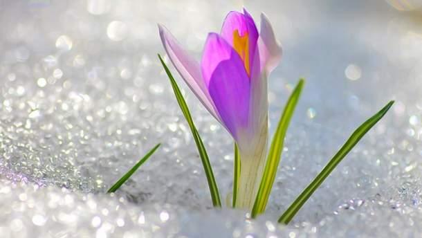 Весна в Украину придет 23-24 марта
