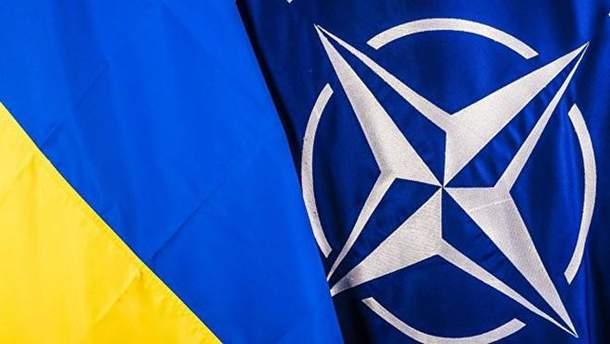 НАТО планирует бесплатно учить английскому языку ветеранов войны на Донбассе