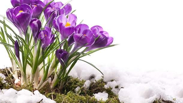 Погода 20 марта в Украине: солнечно и холодно